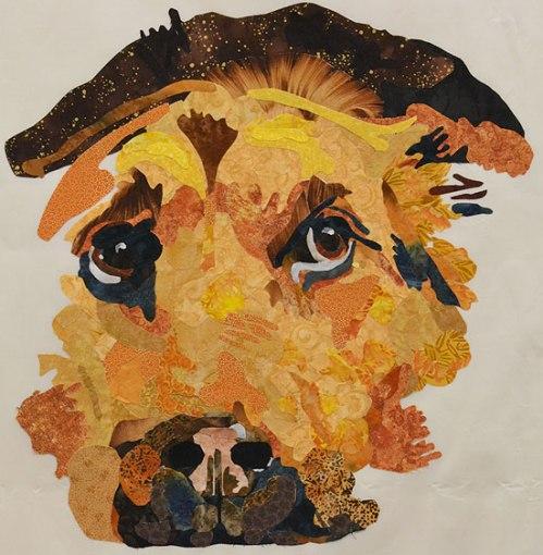 Belinda H's. dog.